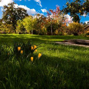 Jardin maison hôtes La Clé des Clos Beynes